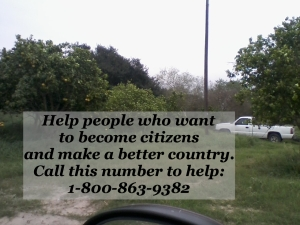Team up with border residence and patrol to keep our country safe. Those who want to make a legal life for themselves are encouraged to call the number and come in legal. Make Flyers and help spread the word.